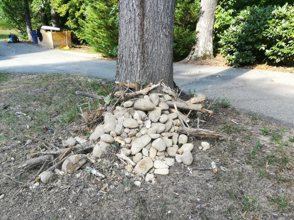 River rocks removed from 1 single stump.